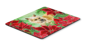 Buy this Cairn Terrier Poinsettas Mouse Pad, Hot Pad or Trivet CK1338MP