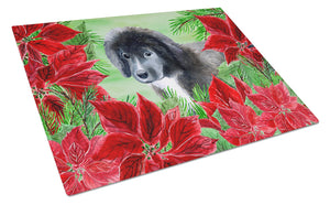 Buy this Newfoundland Puppy Poinsettas Glass Cutting Board Large CK1347LCB