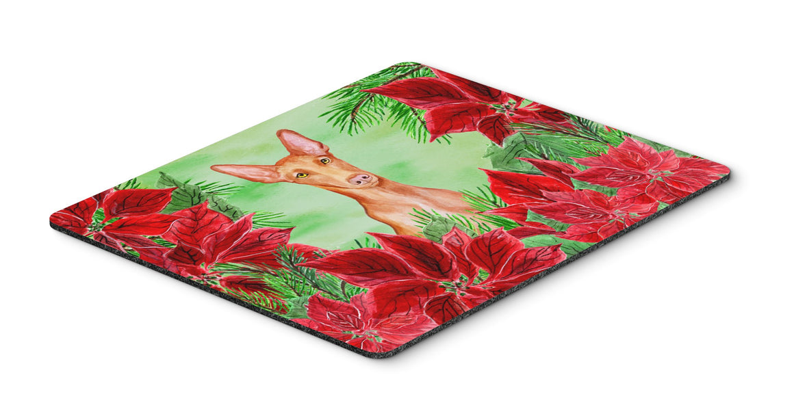 Buy this Pharaoh Hound Poinsettas Mouse Pad, Hot Pad or Trivet CK1362MP