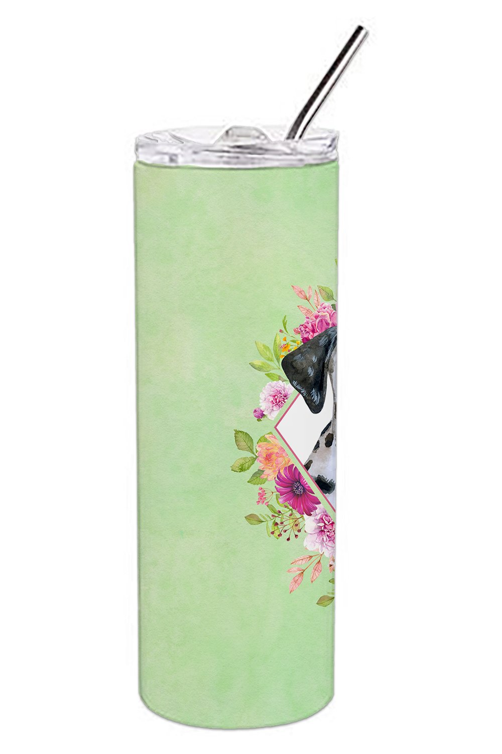 Dalmatian Puppy Green Flowers Double Walled Stainless Steel 20 oz Skinny Tumbler CK4296TBL20 by Caroline's Treasures