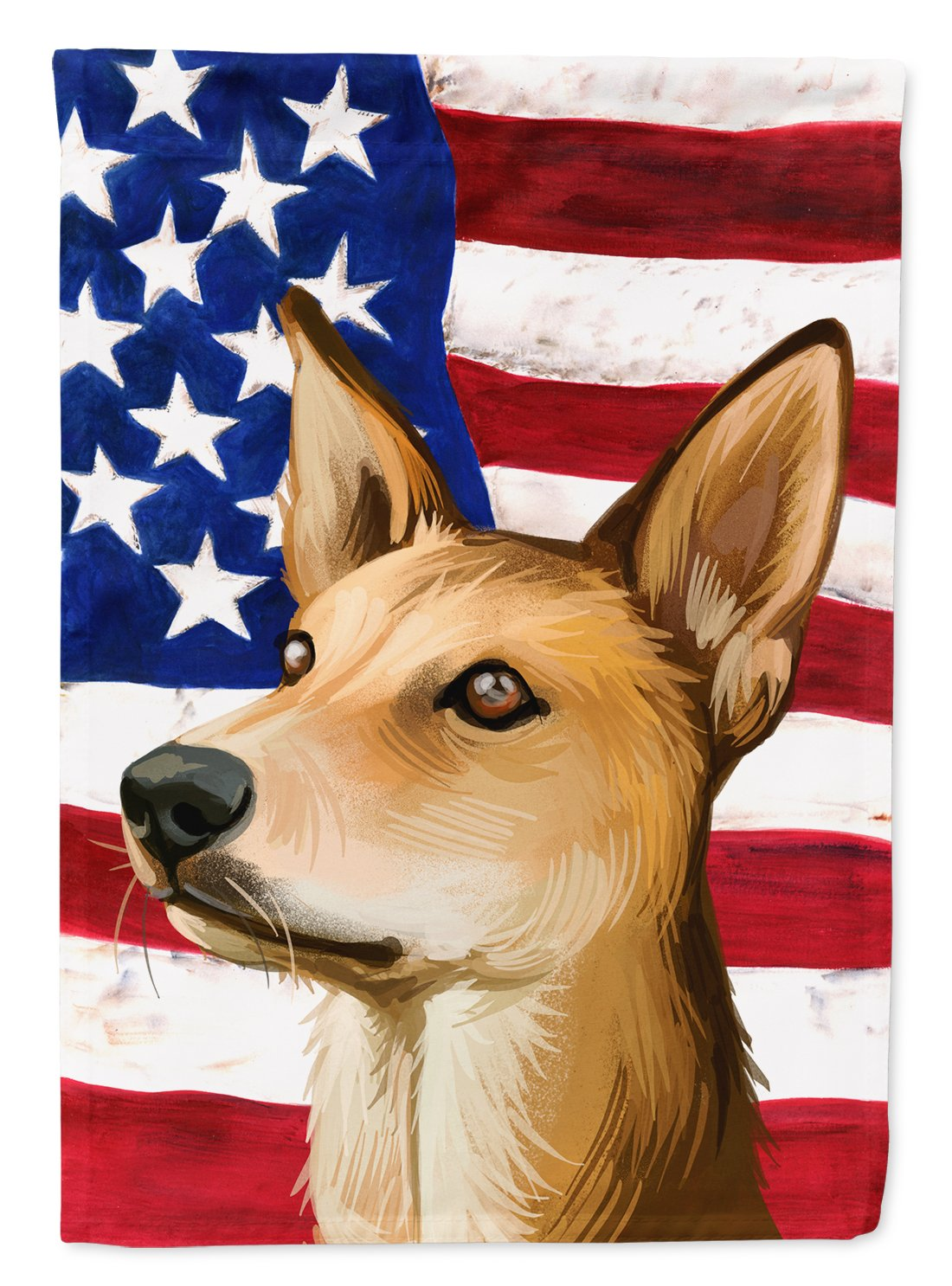 Indian pariah dog American Flag Flag Garden Size CK6567GF by Caroline's Treasures