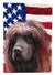 Buy this Irish Water Spaniel American Flag Flag Garden Size CK6572GF