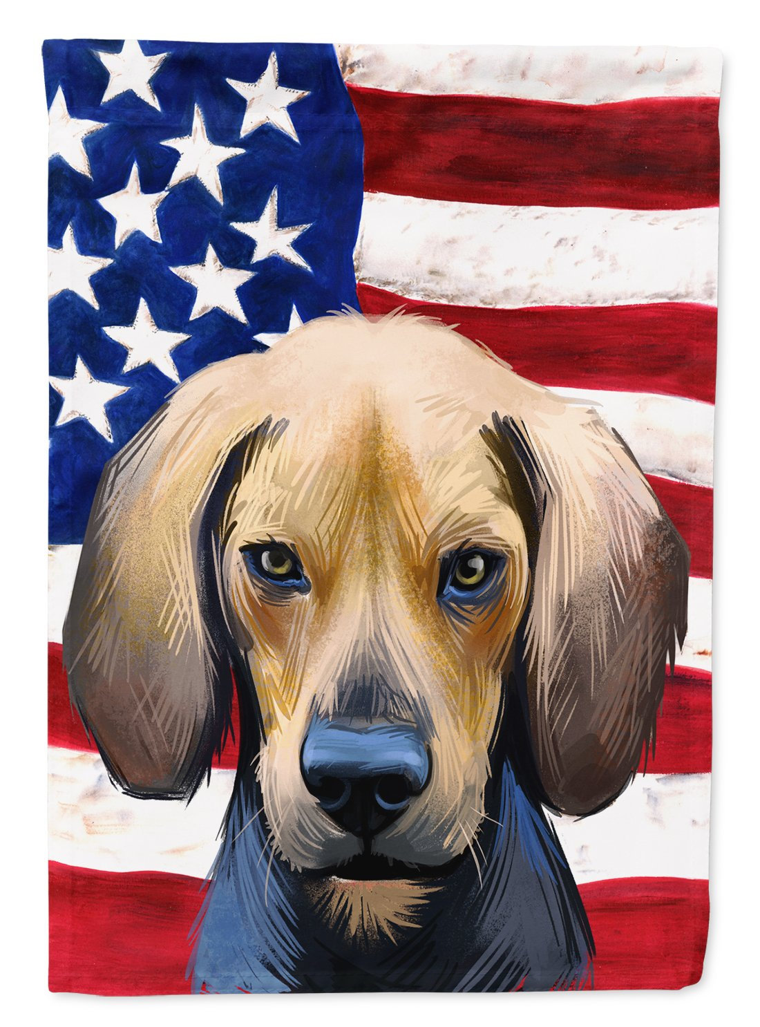 Buy this Kerry Beagle American Flag Flag Garden Size CK6589GF
