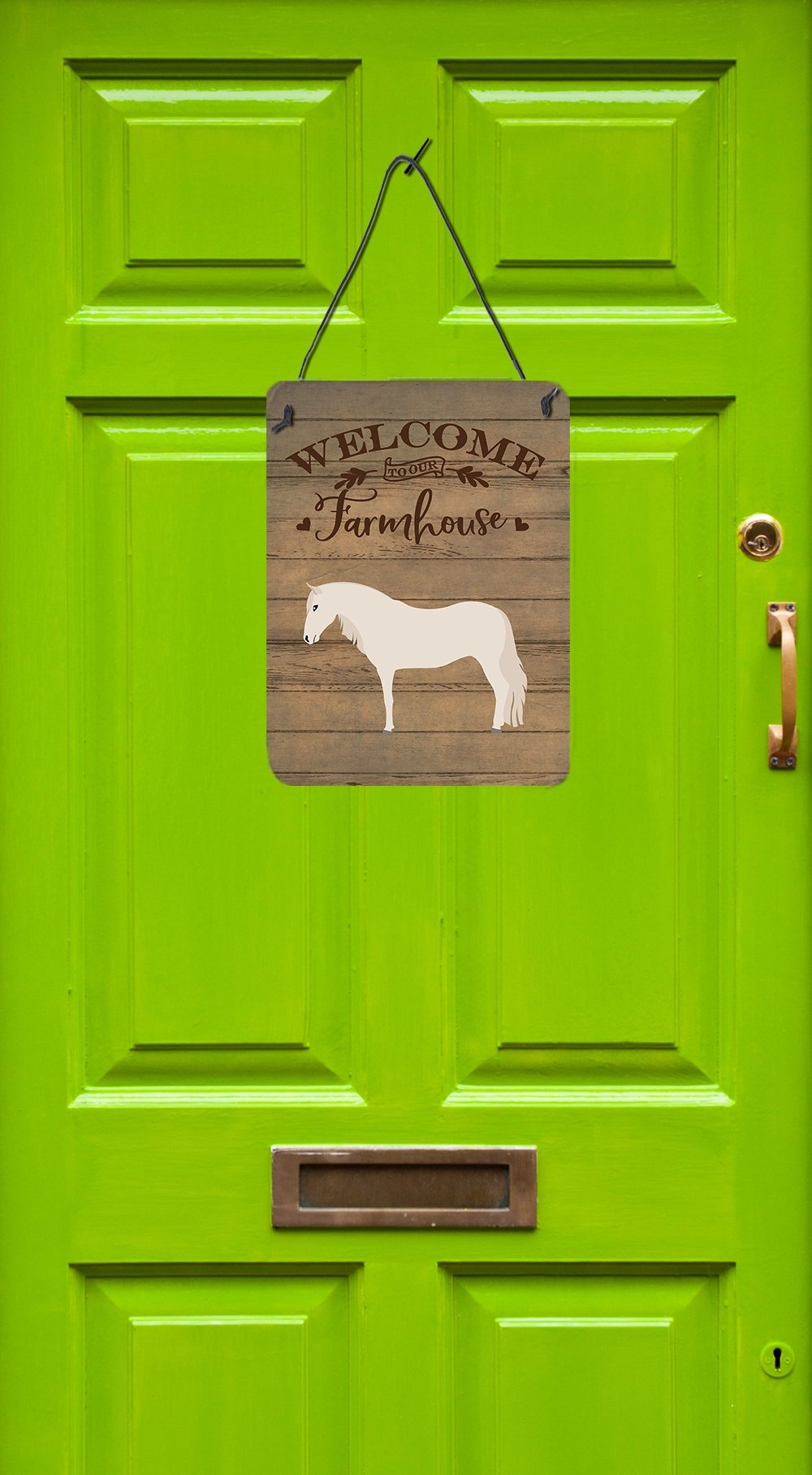 Paso Fino Horse Welcome Wall or Door Hanging Prints CK6849DS1216 by Caroline's Treasures