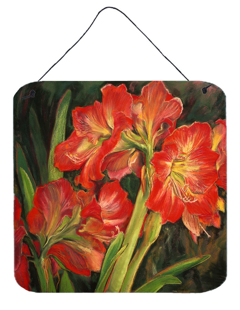 Amaryllis by Neil Drury Wall or Door Hanging Prints DND0091DS66 - the-store.com