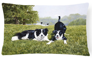 Buy this Let's Play Border Collie Fabric Decorative Pillow FRF0014PW1216