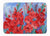 Buy this Gladioli Machine Washable Memory Foam Mat IBD0250RUG