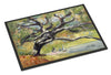 Oak Tree on the Bay with Sailboats Indoor or Outdoor Mat 24x36 JMK1132JMAT - the-store.com