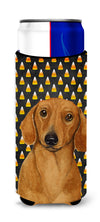 Dachshund Candy Corn Halloween Portrait Ultra Beverage Insulators for slim cans LH9053MUK by Caroline's Treasures