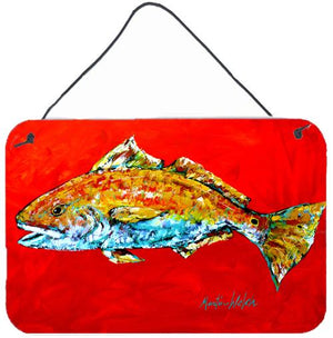 Buy this Fish - Red Fish Red Head Aluminium Metal Wall or Door Hanging Prints