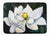 Buy this Sweet Magnolia Machine Washable Memory Foam Mat MW1234RUG