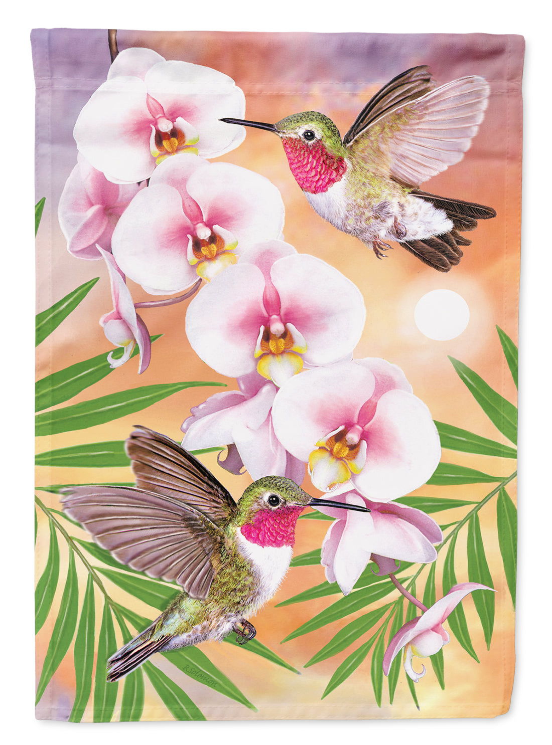 Anna's Hummingbirds Phalaenopsis Flag Canvas House Size PRS4023CHF by Caroline's Treasures