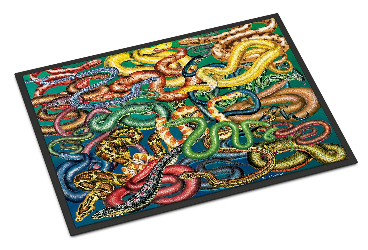 Snakes Indoor or Outdoor Mat 24x36 PRS4031JMAT by Caroline's Treasures