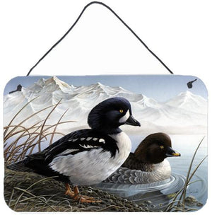 Buy this Goldeneye Ducks in the Water Wall or Door Hanging Prints PTW2056DS812