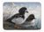 Buy this Goldeneye Ducks in the Water Machine Washable Memory Foam Mat PTW2056RUG