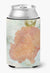 Coral Pink Can or Bottle Beverage Insulator Hugger by Caroline's Treasures
