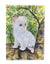 Cat - Ragdoll Flag Garden Size by Caroline's Treasures
