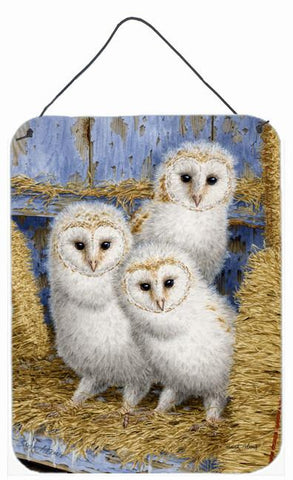 Buy this Barn Owl Chicks Wall or Door Hanging Prints ASA2076DS1216