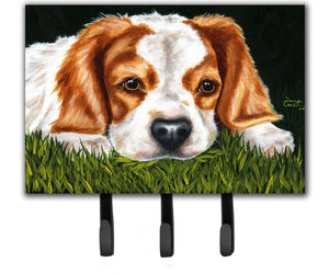 Buy this Cavalier Spaniel in the Grass Leash or Key Holder AMB1395TH68