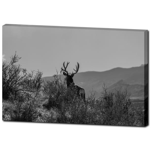 Deer 8 - Premium Canvas Gallery Wrap
