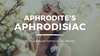The Oily Amulet's: Aphrodite's Aphrodisiac Recipe