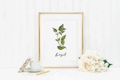Basil Instant Download Printable