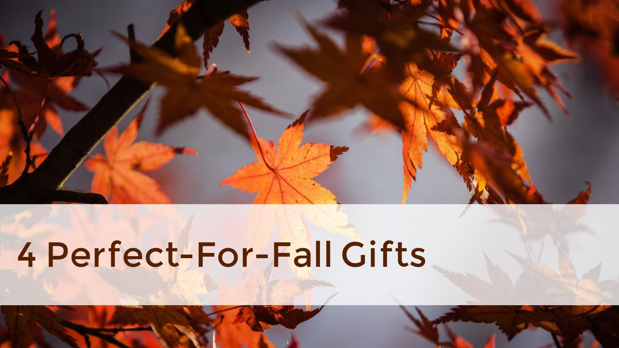 4 Perfect-for-Fall Gifts