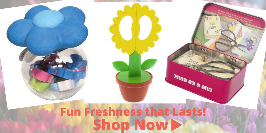 Shop Now Fun and Flowers