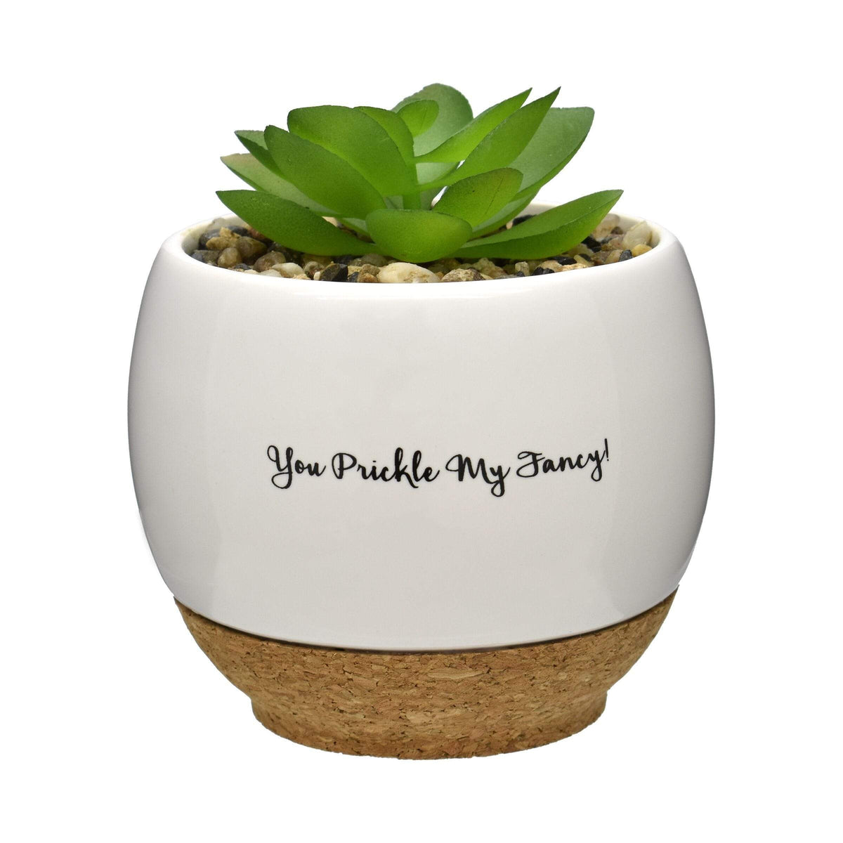 Pun Intended Mini Succulent Pot - You Prickle My Fancy