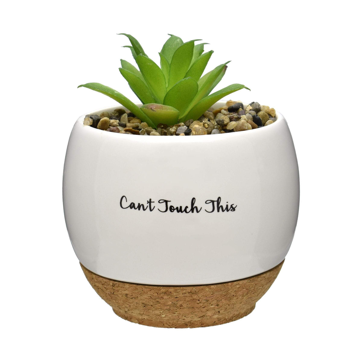 Pun Intended Mini Succulent Pot - Can't Touch This