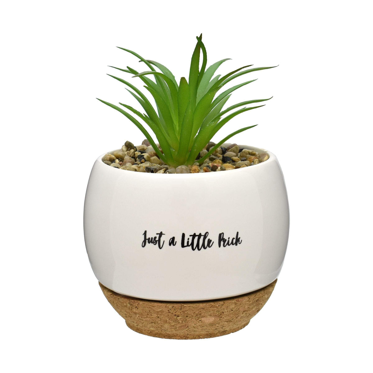 Pun Intended Mini Succulent Pot - Just A Little Prick