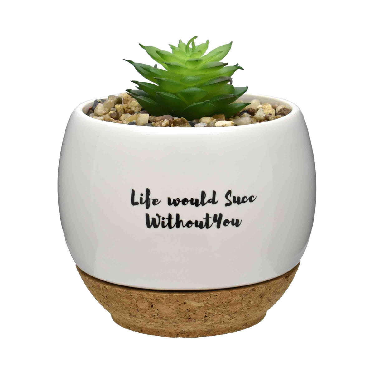 Pun Intended Mini Succulent Pot - Life Would Succ Without You