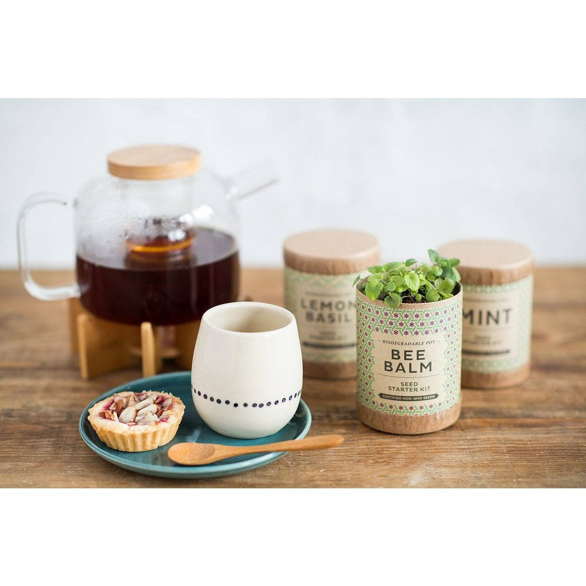 Kraft Seed Starter Kit - Kitchen Series