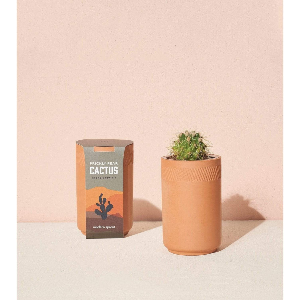 Terracotta Indoor Hydroponic Kit - Prickly Pear Cactus