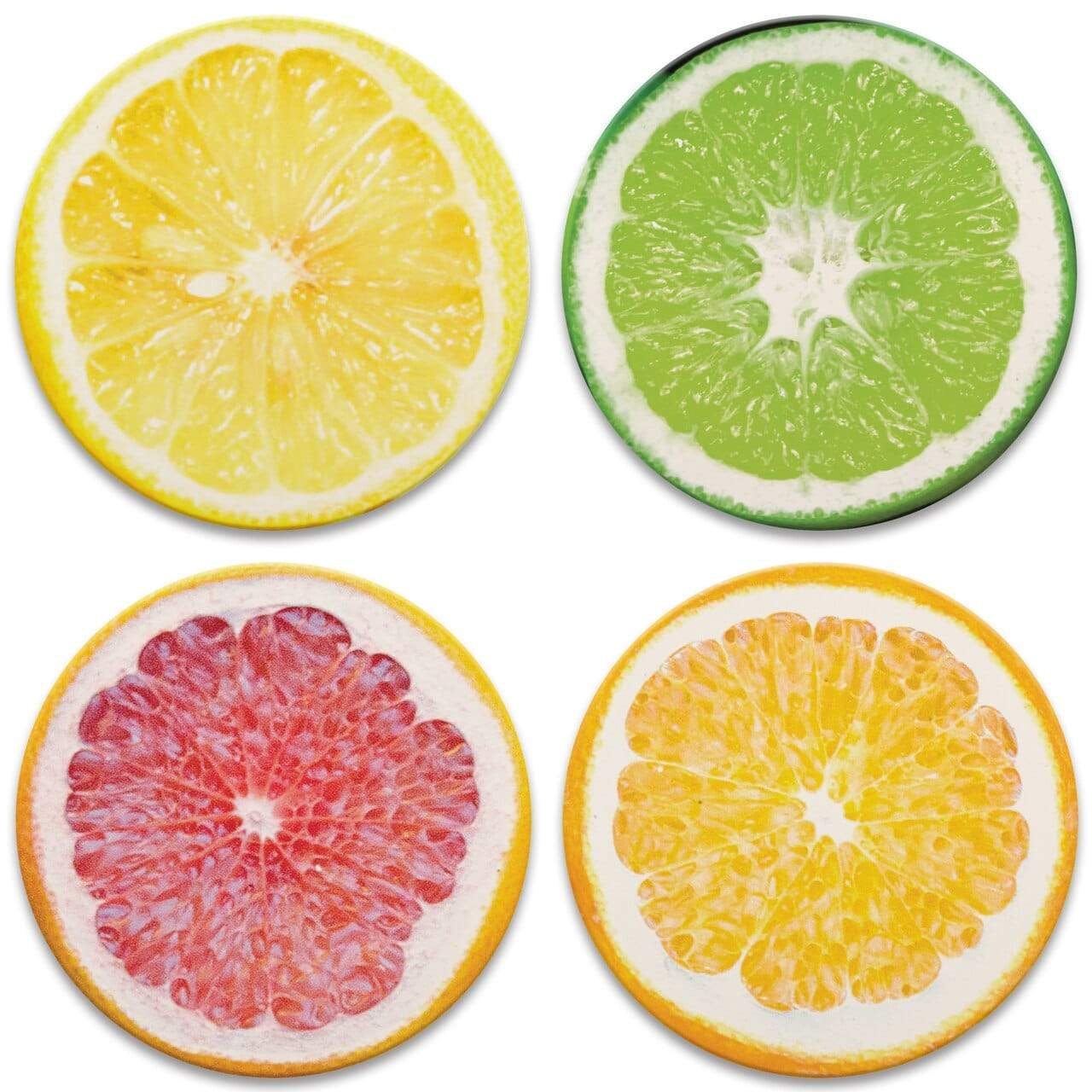 CoasterStone Coasters Vibrant Citrus Coaster - Set of 4