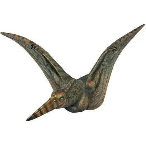 Wall Art Attack Plaque - Pterodactyl