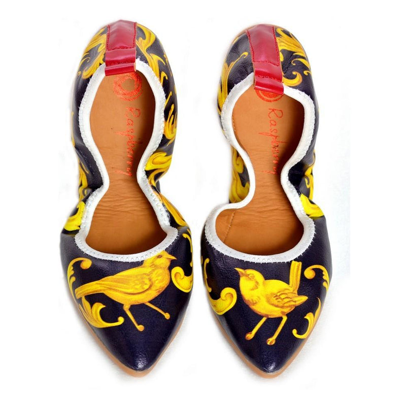 Golden Bird Ballerinas Shoes RAS2515 (1332750024800)