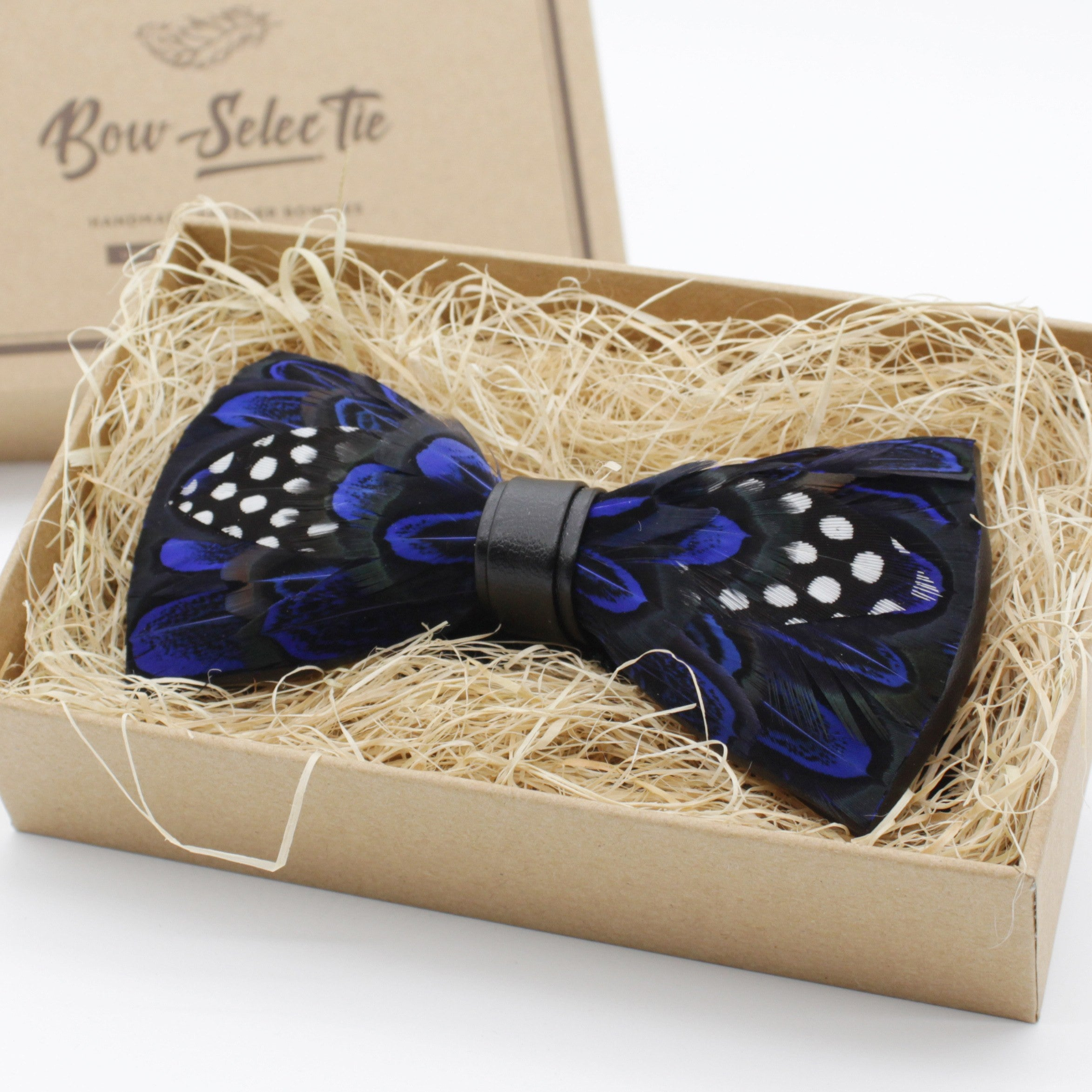 Blue Polka Dot Feather Bow Tie