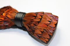 Brown Pheasant Feather Bow Tie - Bowties - 3