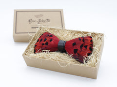 Red Feather Bow Tie