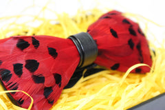Red Feather Bow Tie - Bowties - 2