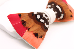 Sunset Feather Bow Tie