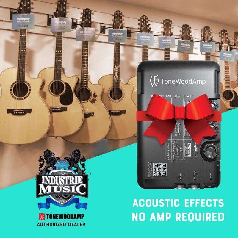 ToneWoodAmp solo for Electro-Acoustic Guitars Acoustic Guitar Amps ToneWoodAmp