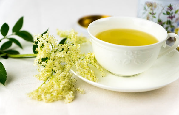 Elderflower Tea - Ancient, Traditional, and Modern Benefits
