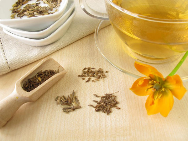 Fennel Tea - Ancient, Traditional, and Modern Benefits