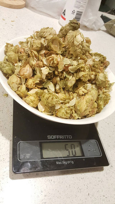 50 grams of hops tea