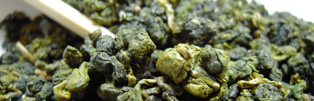 oolong tea fermented