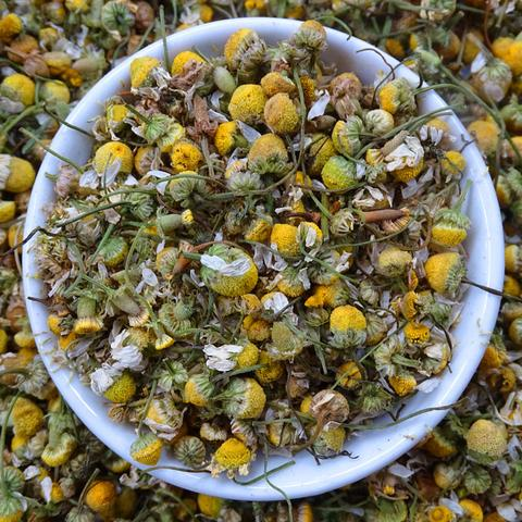 origins of chamomile tea