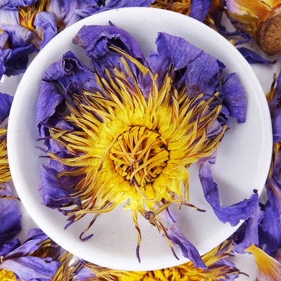 Blue Lotus Flower Tea, Herbal Tea Tea Life