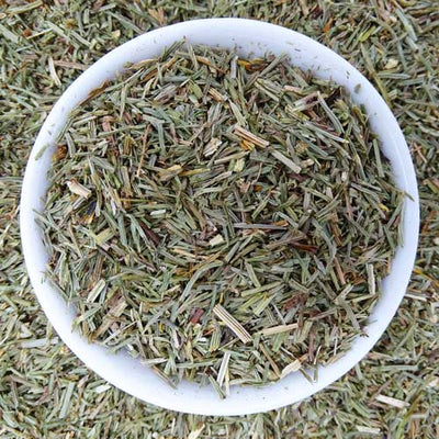 Horsetail Field Tea, Herbal Tea Tea Life